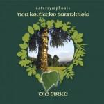Celtic Lifetree Massage - Lebensbaum Birke