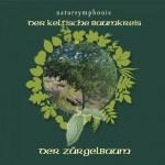 Celtic Lifetree Massage - Lebensbaum Zuergelbaum