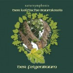 Celtic Lifetree Massage - Lebensbaum Feigenbaum